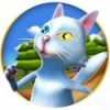 Kitty Run – Crazy Cats