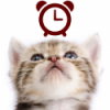 Cats Analog-Clocks Widget