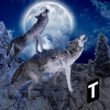 Angry Wolf Simulator 3D