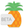 Pineapple – Icon Pack